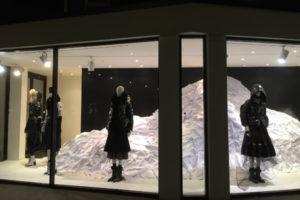 joseph retailers window by carla jayne batson